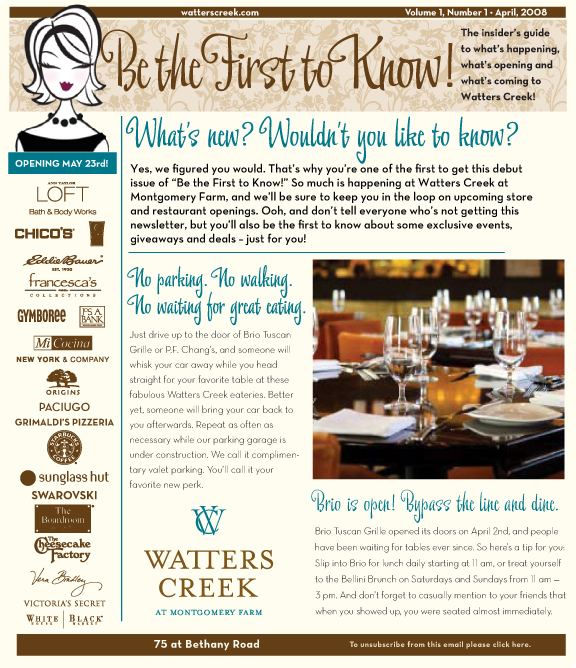 Email Newsletter Blast for Watters Creek